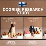 芬蘭風險研究結果:食物對於狗狗體內發炎指標的影響